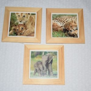 IKEA set of 3 Animal Pictures in Frames